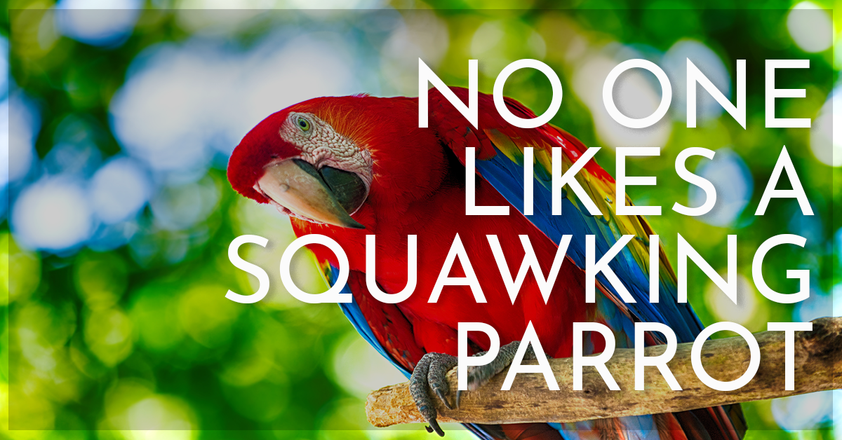 No One Likes A Squawking Parrot